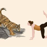 yoga tijger iw