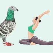 yoga duif iw
