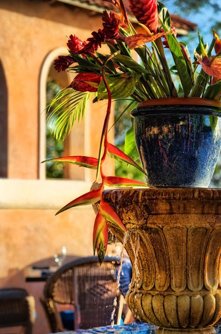 fountain cafe luna barbados