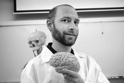 Human anatomy tutor holding three dimensional model of brain in front of skeleton in classroom laboratory