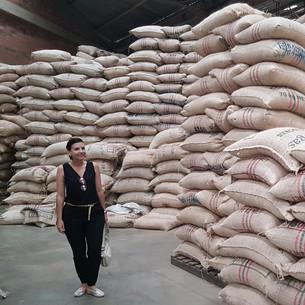 Visitando otros exportadores de café