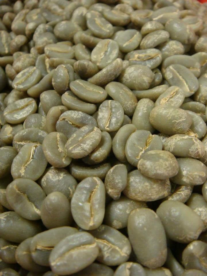 Café Verde o Almendra