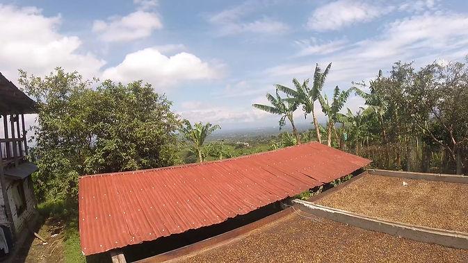Secadero al sol de finca aliada de café de altura