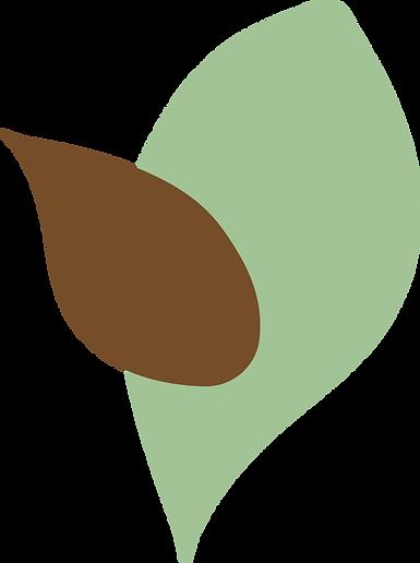 Afrocats-leaf-5.png