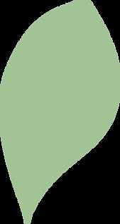 Afrocats-leaf-3.png