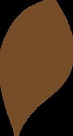 Afrocats-leaf-2.png