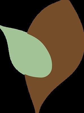 Afrocats-leaf-1.png