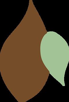 Afrocats-leaf-4.png