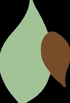 Afrocats-leaf-6.png