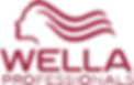 1024px-Wella_logo.svg.png
