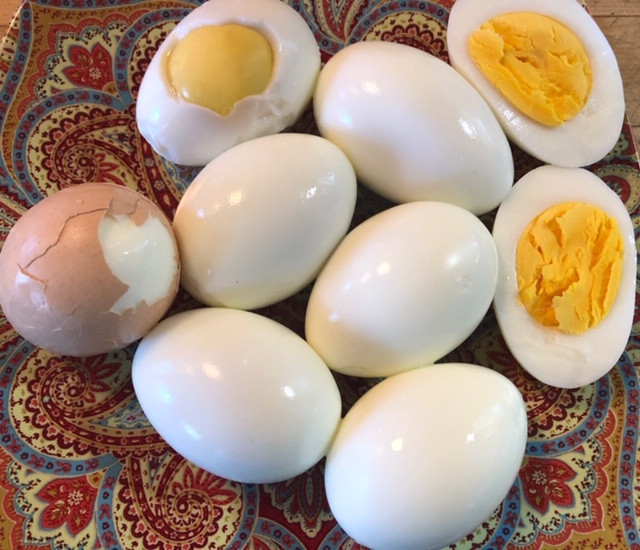 Farm Fresh Eggs Hard Boiled On Day 2? It Is Possible, The Proof Is In The Photo!!!