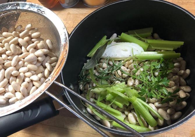 A Bean Is A Bean Is A Bean, Not Necessarily!! A Vegetarian Protein!