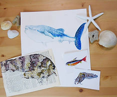 sample stickers, a print, and an original from marinebioartist