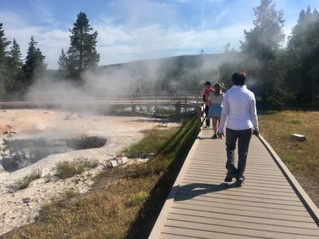 Yellowstone National Park / July, 2017