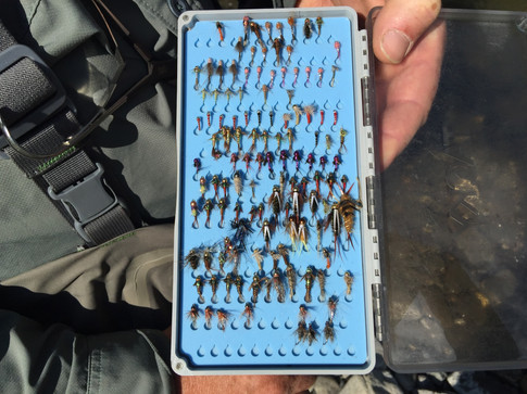Nymph collection