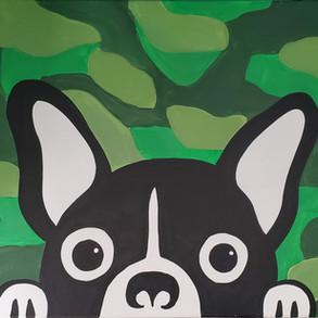 Camo Dog