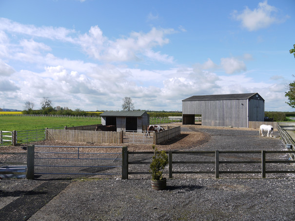Beccys previous yard with own designed all weather turnout system