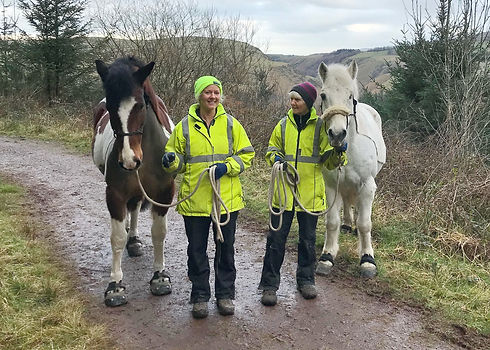 Beccy and Val handwalking ponies in the