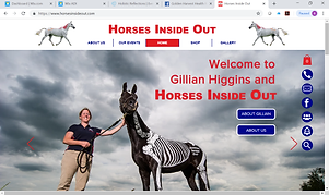 Horses_Inside_Out