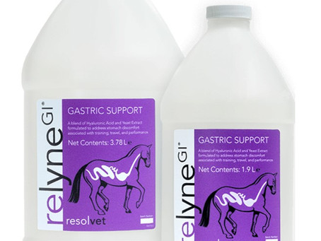 Relyne GI and how it might support your horses digestive tract (and joint) health!