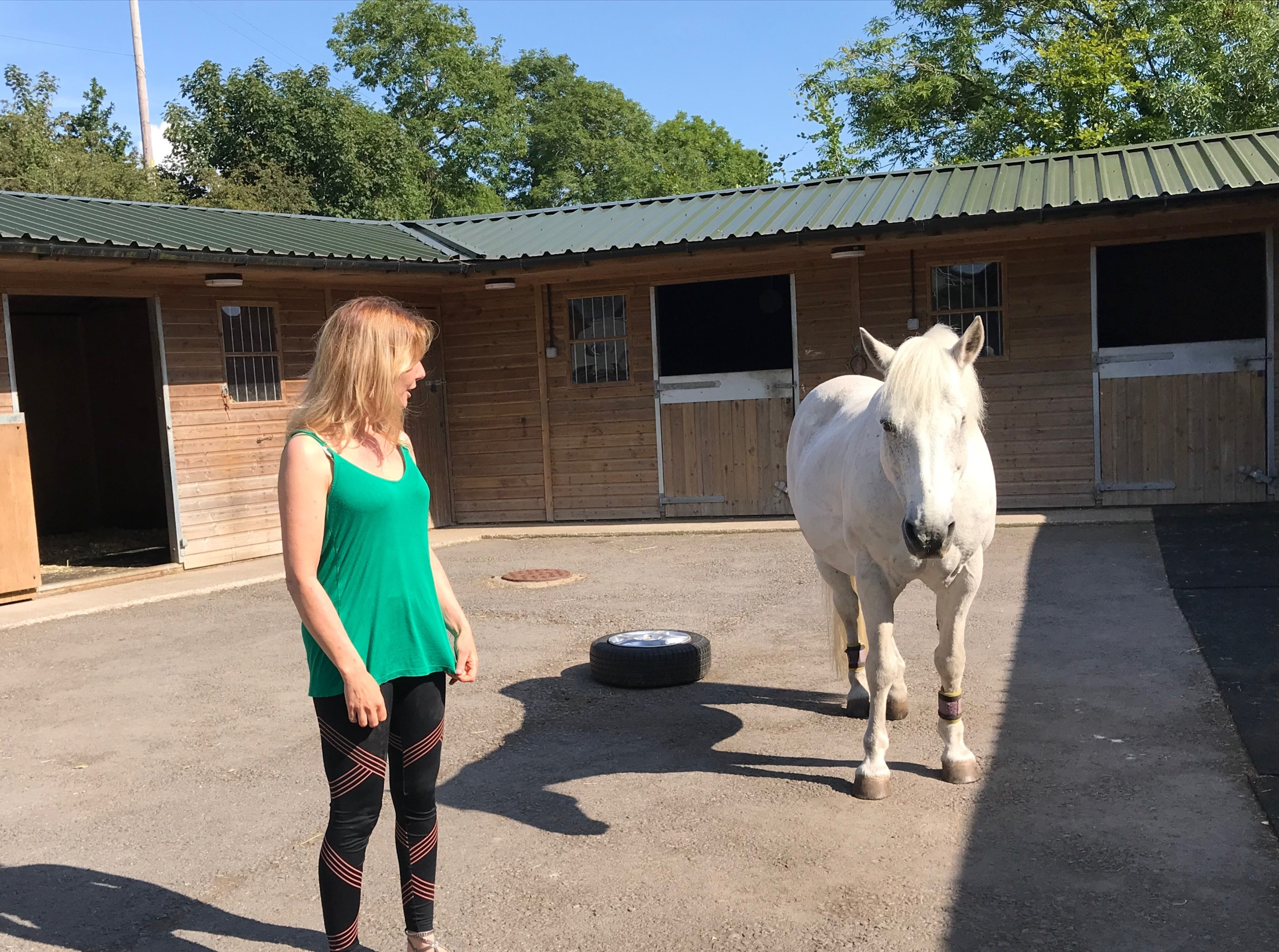 Nelly and Pam during a Holistic Horse Event