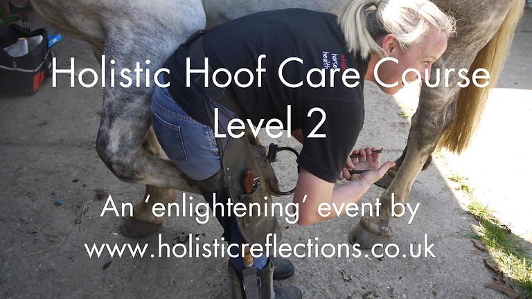 Holistic Hoof Care Course - Level 2 - 17th November 2019
