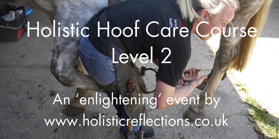 Holistic Hoof Care Course - Level 2 - 18th August 2019