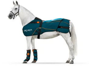 Introducing BEMER horse set!