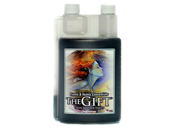 the gift image A4.jpg