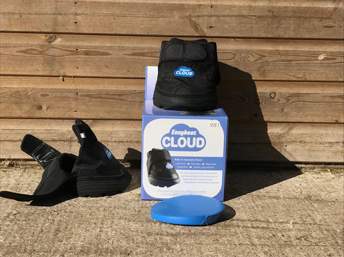 Therapeutic hoof boots