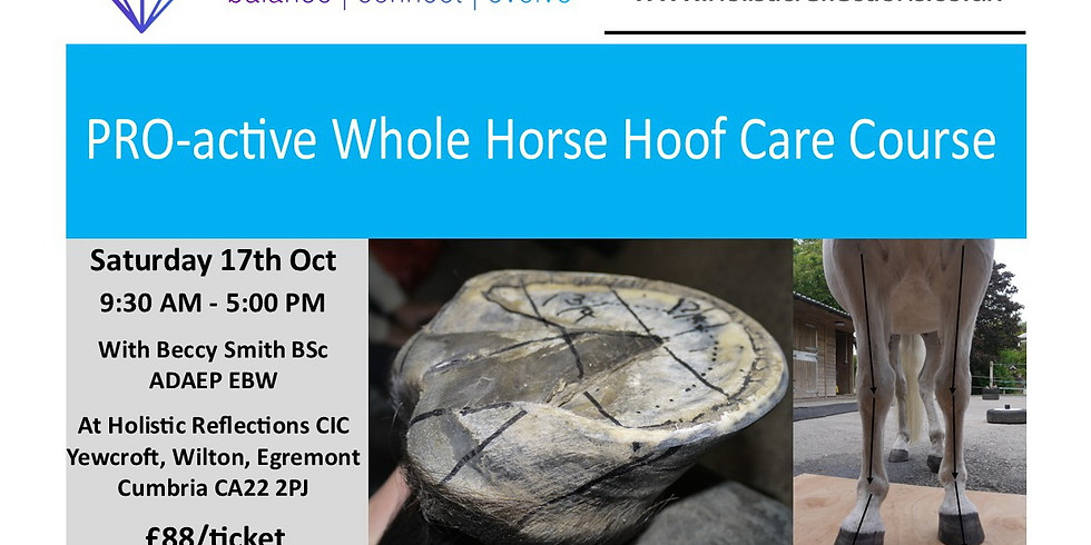 PRO-active Whole Horse Hoof Care 1 day Intensive Course October 17th 2020