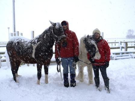 Caring for horses in the snow