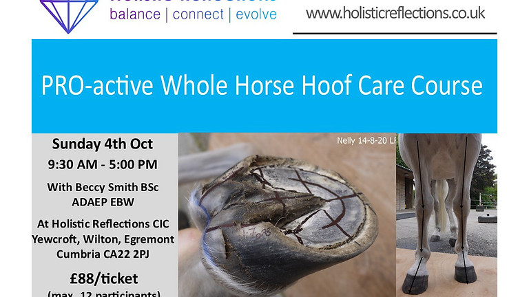 PRO-active Whole Horse Hoof Care 1 day Intensive Course October 4th 2020