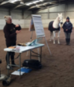 Healing Horses Holistically AEP demo.jpg