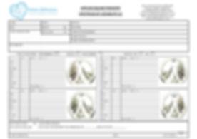 AEP SPECTRUM SHEET PART 1.jpg