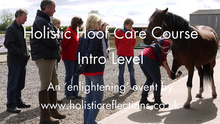 Holistic Hoof Care Course - Intro Level - September 22nd 2019