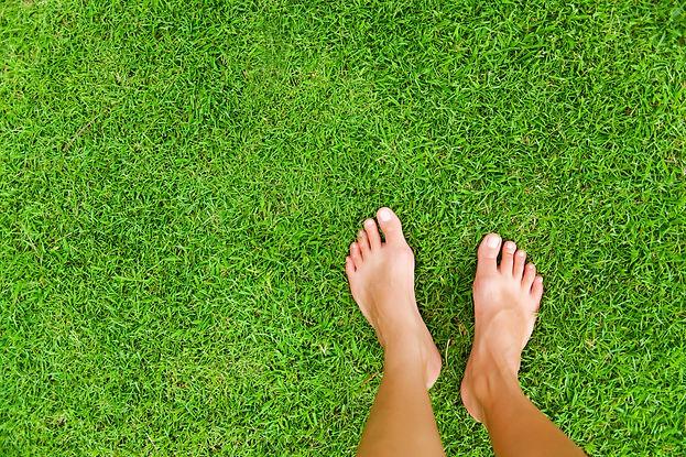Foot over green grass.jpg