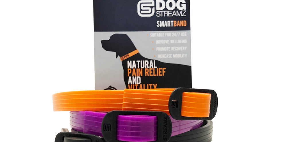 DOGStreamZ SMART band