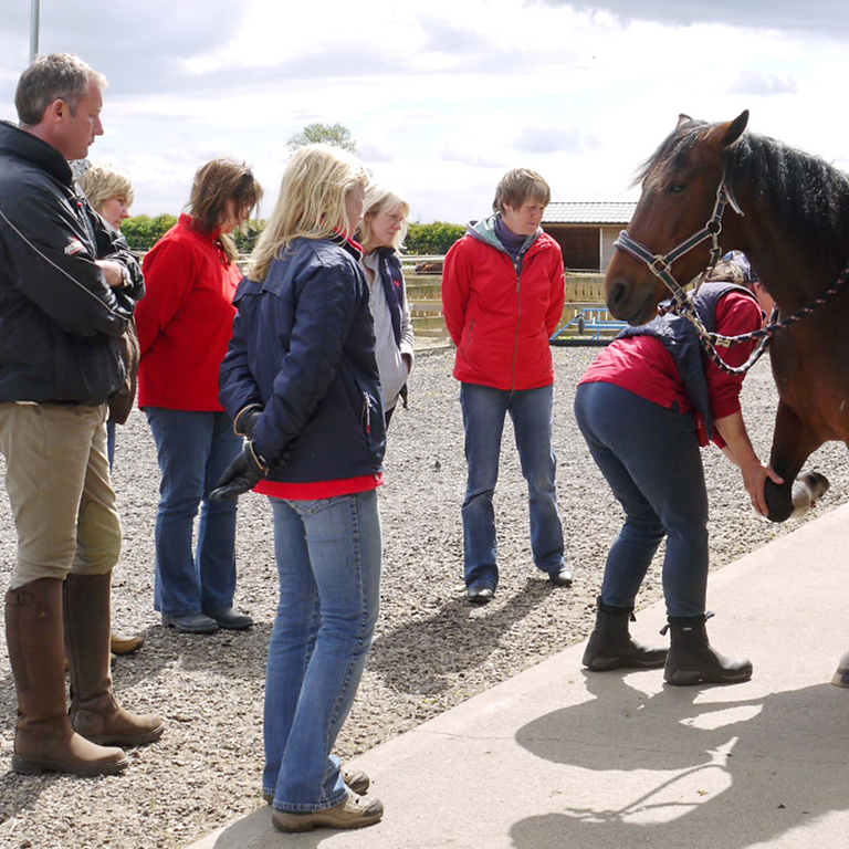 PRO-Active Integrative Hoof Care CPD Event for professionals 5th June 2021
