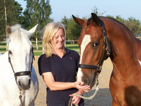 Beccy with Yewcroft herd members Nelly and Daffy