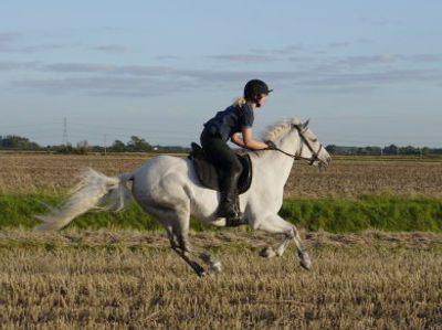 Beccy riding Nelly.jpg