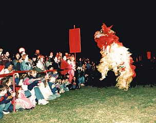 Crowd and Performers at Mulan event in China, Texas