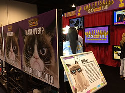 Grumpy Cat and Friskies Booth Vidcon
