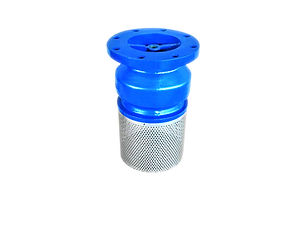 FOOT VALVE WITH STRAINER.jpg