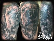 Tattoo of a Yorkshire dog muzzle portrait.