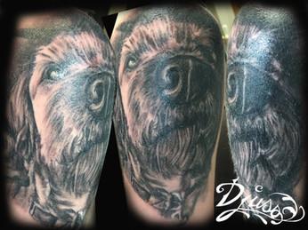 Modéle tatouage portrait chien réaliste black and gray épaule femme