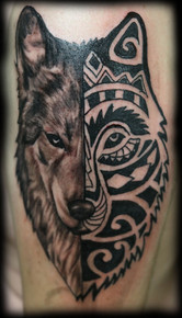 Tattoo of a Polynesian wolf head and semi realistic on the arm of a man