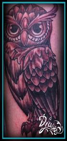 Tatouage d'un hiboux néotrad sur le bras d'un homme.
