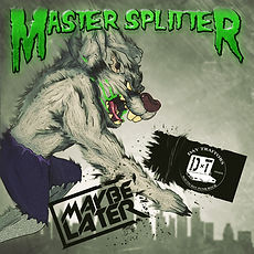 master splitter cover.JPG