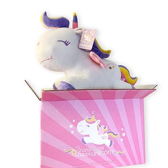 Box_Snowcone.jpg